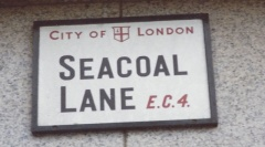 Seacoal cropped