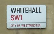 Whitehall crop