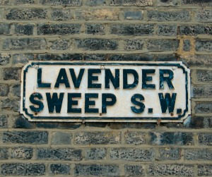 Lavender Sweep